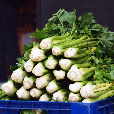 Sedano Nero or Black Celery